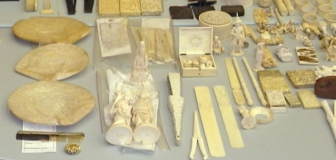 Ivory Seizure in Ohio. Photo Credit; FWS